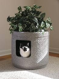 Decorative Cat Litter Box Decorative cat litter box 1100100 1100100 100 ultramodern portrayal quot 31