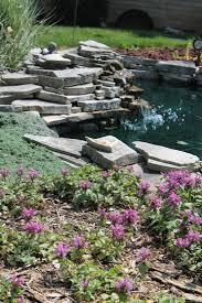 DIY Water Gardens Designing A Backyard Water GardenSmall Ponds In Backyard