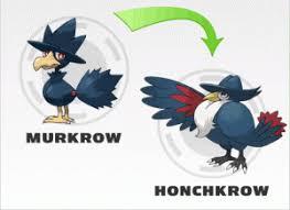 Pokemon Murkrow Evolution Chart Murkrow Mega Evolution Nzdusdchart Com