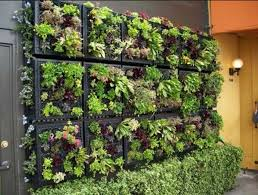 Small Picture Vertical Garden Design Ideas Images About Indoor Gardens On