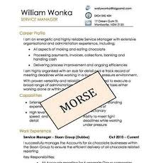 professional resume writing services mn dmv