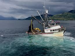 Commercial Fishing In Alaska 2015 Youtube