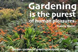 Garden Quotes Adorable Garden Quotes And Gardening Sayings Flowers And Plants