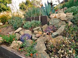 Small Picture DIY Landscaping California Waterwise Front Yard
