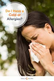 6 Ways to Tell the Difference Between Cold and Allergies