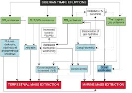Mass Effect Flow Chart Ocean Acidification And The End Permian Mass Extinction