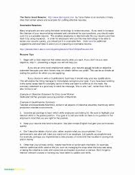 50 New Resume Objective Examples For College Students Resume Templates