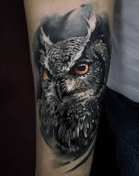 фото крутого тату совы в стиле реализм на предплечье парня фото