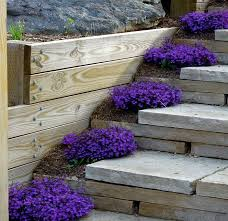 Small Picture 13 best garden stairs images on Pinterest Garden steps Gardens