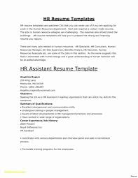 Template Cv Word Document Download Business Resume