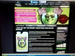 Advanced Nutrients Big Bud Or House And Garden