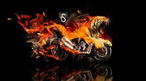 Fire Tiger Wallpaper Hd - 1920x1080 ...
