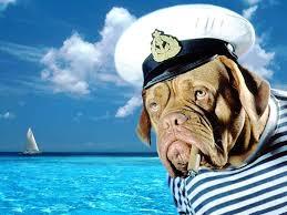 Ο σκύλος ο θαλασσινός του Ν. Καββαδία...