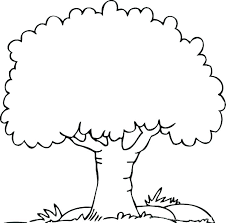 coloring pages of tree. Exellent Pages Palm Tree Coloring Pages Page   With Coloring Pages Of Tree