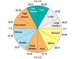 Tcm Time Chart Chinese Body Clock What Is The Chinese Meridian Clock