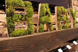 jenni and i have done these live moss letters several times simply cut the tops of paper mache letters you can find in any craft and stuff with live