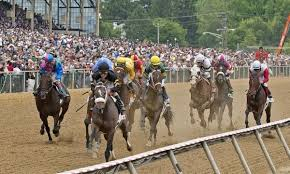Preakness Stakes Handle Down 3 2 Handle For Card Rises 2 0