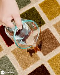 pet stain remedy