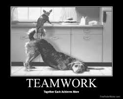 Teamwork Quotes For Employees Enchanting Thank You Quotes For Employees [48] Quotes Links