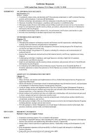 Information Security Resume Sample VP Information Security Resume Samples Velvet Jobs 19