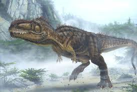carcharodontosaurus size giganotosaurus vs carcharodontosaurus animalia enthusiasts