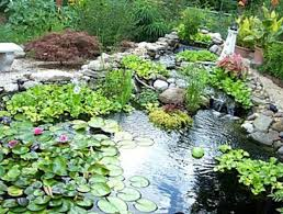 Small Picture Garden Design Jobs In London izvipicom