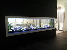 Cool Aquariums Best Glass Aquarium Manufacturers Aquarium Ideas Pinterest