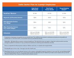 10 Dental Chart Form Resume Samples