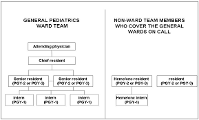 Dhhs Organisational Chart Figure 1 The Organizational Structure Of The Ward Teams