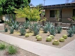 Small Picture Gallery of Desert Landscape Plans Urban Gardening September 2013