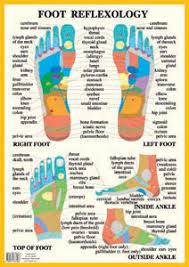Reflexology Foot Chart Top Of Foot Catalogue Baarle Com Uk