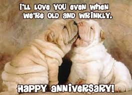 Funny Anniversary Quotes Best 48 Wedding Anniversary Quotes For Your Wife