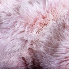 animal skins hides
