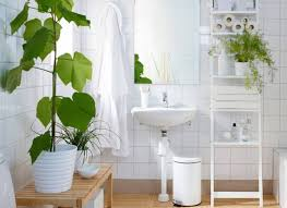 shower plants