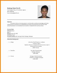 Sample Curriculum Vitae For Job Application 5 Cv Sample For Job Application Pdf Theorynpractice