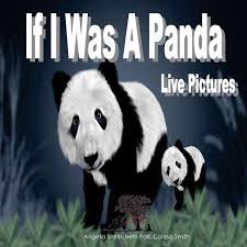If I Was A Panda – Puppy Dogs & Ice Cream Inc.