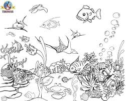 Small Picture Fish Under the Sea Coloring Pages Ocean Life Pinterest The o