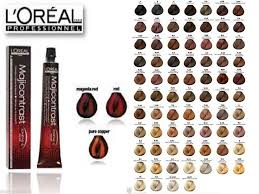 loreal professional hair colour shade card om hair