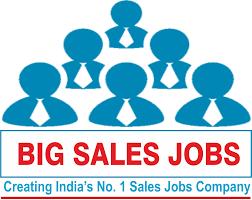 big sjobs com creating s no 1 s jobs dgm for international marketing