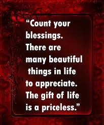 The Beautiful Things In Life Quotes