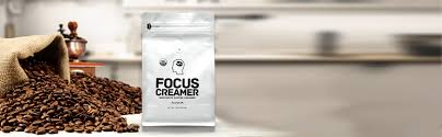 This product is meant to be an additive for coffee and tea drinkers and claims to be able to enhance focus, accelerate fat loss, and more. Focus Creamer French Vanilla Keto Creamer Organic Non Dairy Sugar Free Nootropic Coffee Creamer Amazon Com Grocery Gourmet Food