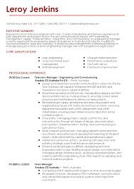 A Sample Of Professional Resume Word Format Pinstripe Premium Resume