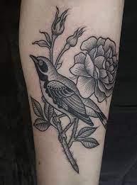 Susanne Konig bird tattoo | Bird tattoos arm, Birds tattoo, Small bird  tattoos