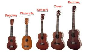 Ukulele Size Guide All You Need To Know Zing Instruments