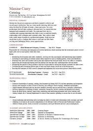 example of good cv layout catering manager cv template food preparation job description