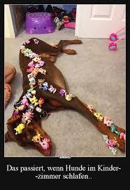 Das Passiert Wenn Hunde Im Kindezimmer Schlafen Lustige Bilder