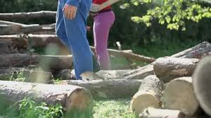 Walking Logs Man Walking Over Logs On Lawn Stock Video Probakster 97485264