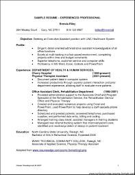 Stunning Decoration Professional Experience Resume Example Resume