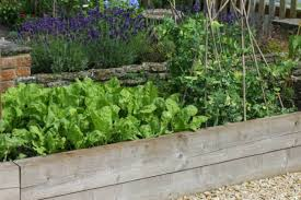 raised garden bed guide