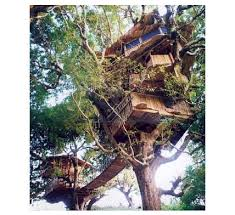 Tree Houses  Glamping Hub BlogTreehouse Vacation California